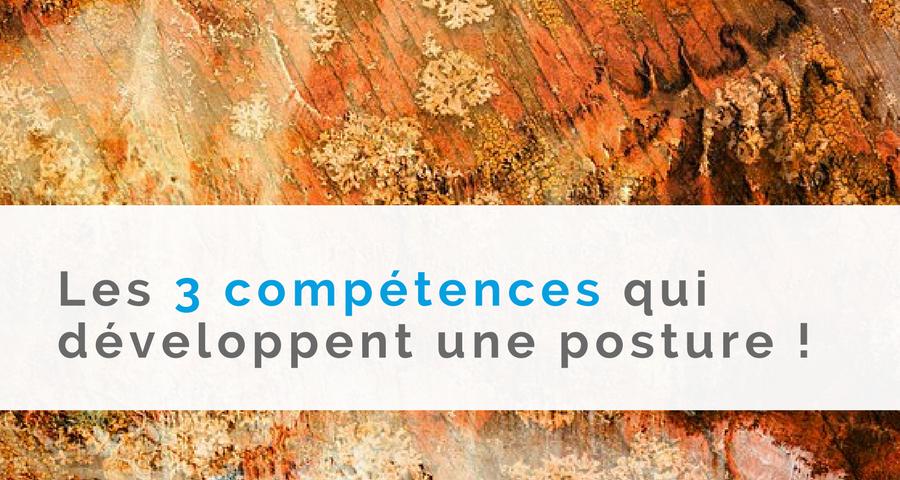 """image de couverture de l'article : """"Les 3 compétences qui développent une posture !"""" écrit par cyrille bertrand, directeur de NGI"""