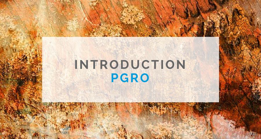 image de la formation introduction PGRO - Neuro gestalt institut - Formation en psychothérapie gestalt et PGRO - directeur de formation Mr Cyrille Bertrand