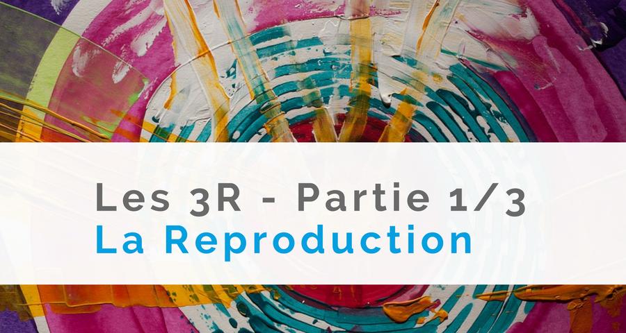 image du dossier mensuel de décembre, sur le blog d'NGI : Les 3R, la Reproduction