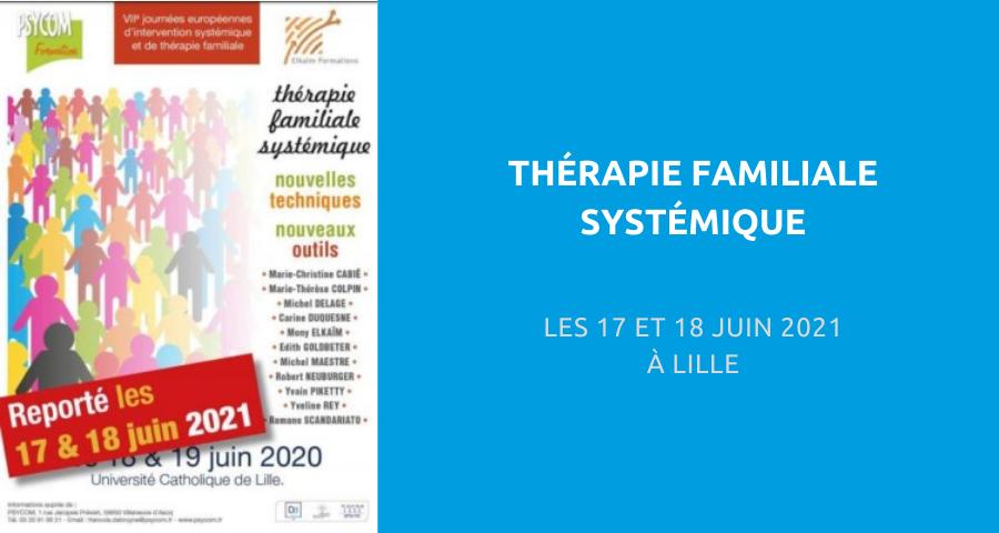 image de couverture de l'article concernant le 7e journées européennes d'intervention systémique et de thérapie familiale : « thérapie familiale systémique », 17 et 18 Juin 2021 à Lille.
