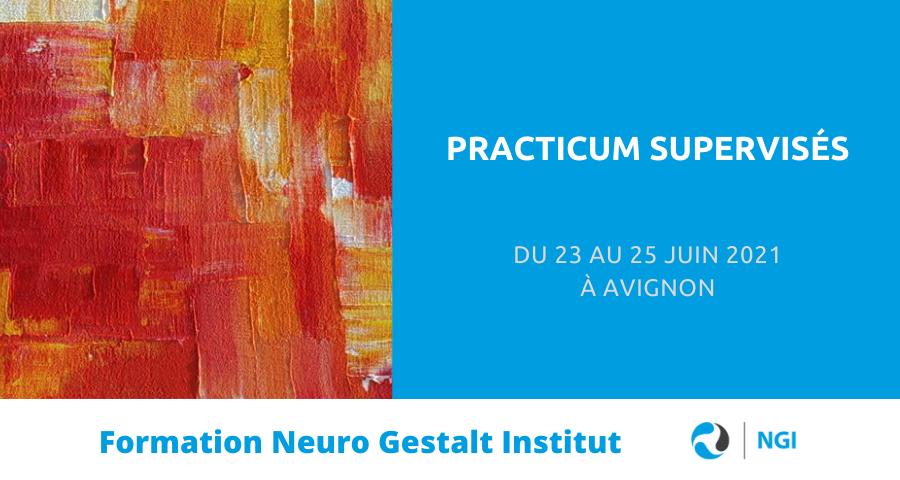 image de couverture de l'article concernant La nouvelle formation Practicum supervisés, créée par Neuro Gestalt Institut, s'inscrit dans le développement des items de la compétence interactive. Elle se déroulera du 23 au 25 Juin 2021 à Avignon.